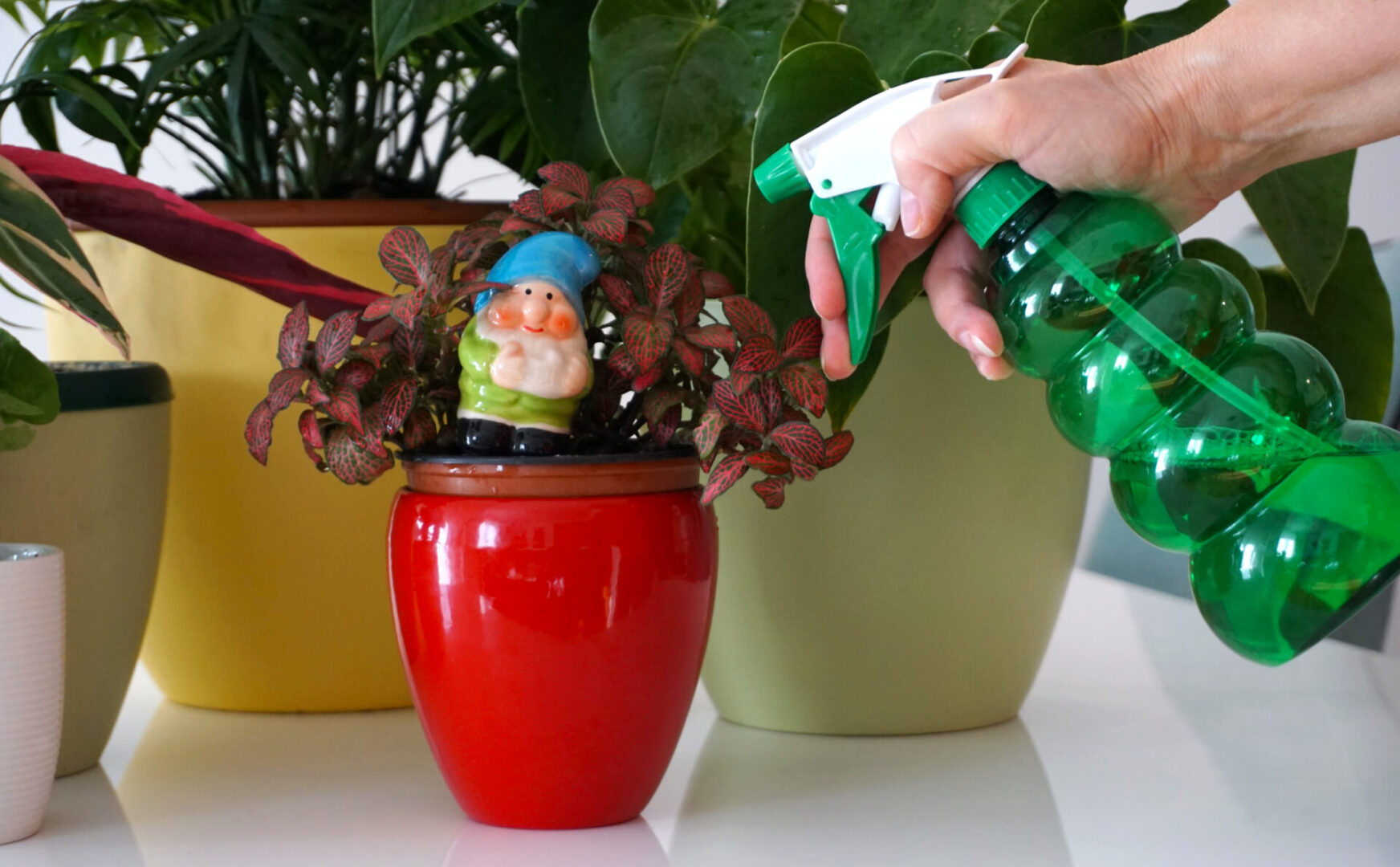 Household chemicals and harmful toxic substances in the home concept. Plant care protection with woman hand and green plastic bottle with liquid for spraying and houseplant protection and pest control